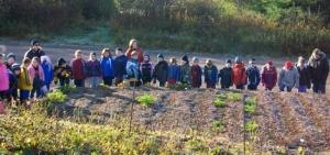 Community Garden, Burin