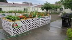 AFTER: Myrtle's garden was completed in July of 2014.