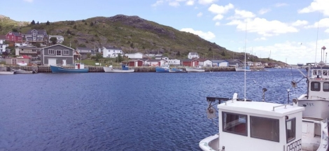 Common scenery found in Newfoundland and Labrador