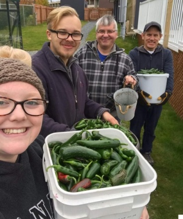 Participants in the Supportive Volunteer Program harvested fresh vegetables at the Clarenville Farm and Market with the help of market staff and AEC support workers.